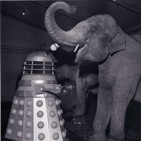 dalek-and-elephant.jpg